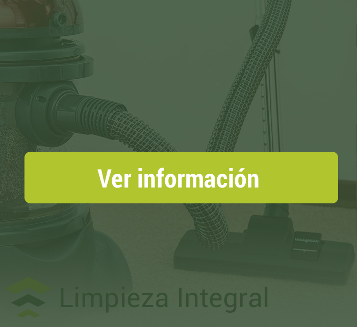 limpieza-integral-ecoclean-hv